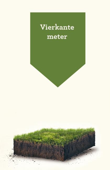 Vierkante meter